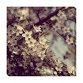 Spring Blooms Oversized Gallery Wrapped Canvas