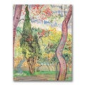 Vincent Van Gogh 'The Garden of St. Pauls Hospital' Canvas Art