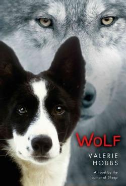 Wolf (Hardcover)