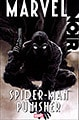 Marvel Noir: Spider-Man / Punisher (Paperback)