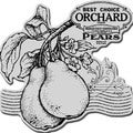 Stampendous Cling Rubber Stamp-Pear Label