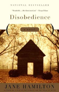 Disobedience: A Novel (Paperback)