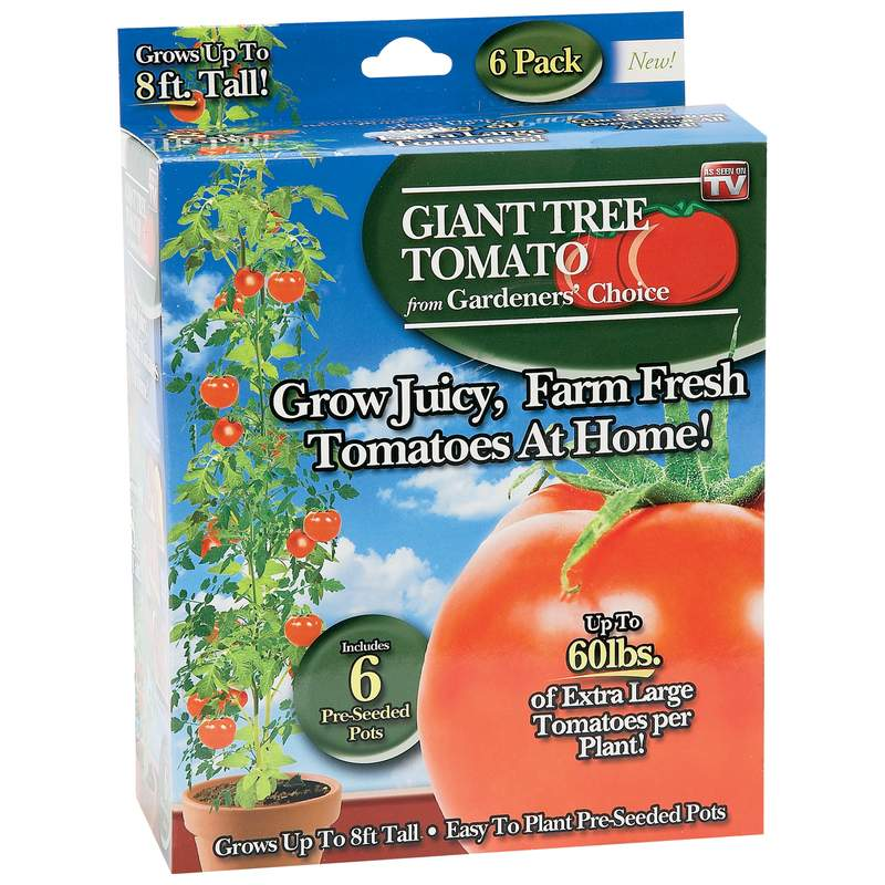 As Seen On TV Gardeners' Choice Giant Tree Tomato (Case of 24)