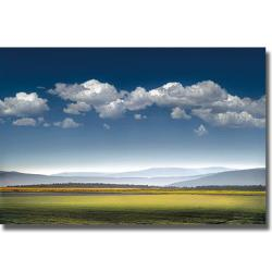 William Vanscoy 'Catch the Wind' Canvas Art