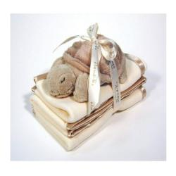 Cloud B Satin Trim Spill Cloth & Turtle Rattle Gift Set