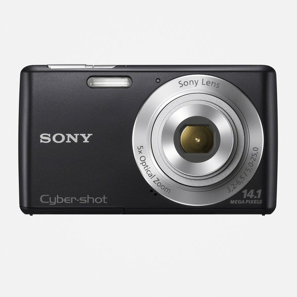 Sony Cyber-shot DSC-W620 14.1MP Black Digital Camera