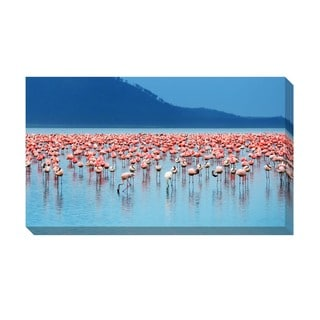 Flamingos Oversized Gallery Wrapped Canvas