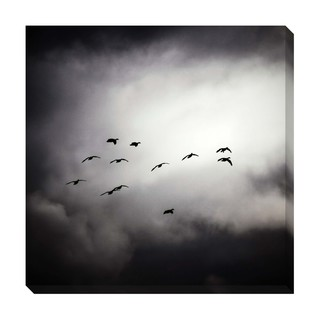 Flight Oversized Gallery Wrapped Canvas