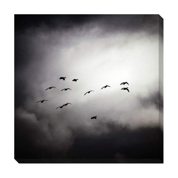 Gallery Direct Flight Oversized Gallery Wrapped Canvas