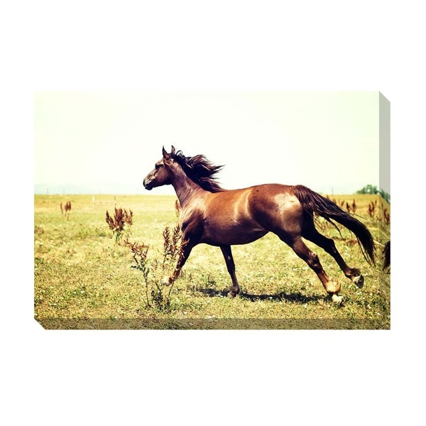 Run Wild Oversized Gallery Wrapped Canvas