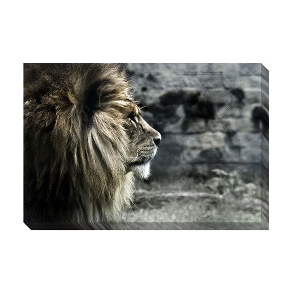 King of the Lions Oversized Gallery Wrapped Canvas
