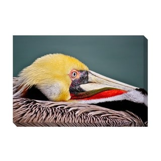 Majestic Pelican Oversized Gallery Wrapped Canvas