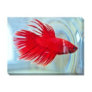 Gallery Direct Red Beta Oversized Gallery Wrapped Canvas