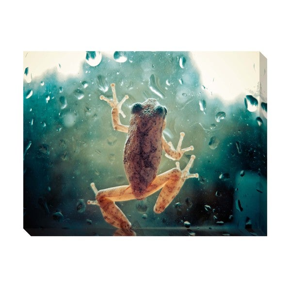 Climbing Frog Oversized Gallery Wrapped Canvas