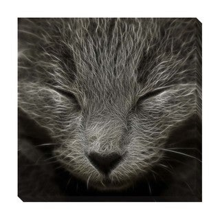 Gallery Direct Sleepy Kitty Oversized Gallery Wrapped Canvas