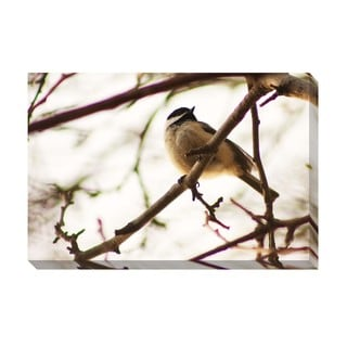 Gallery Direct Contemplative Oversized Gallery Wrapped Canvas