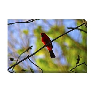 Red Bird Oversized Gallery Wrapped Canvas