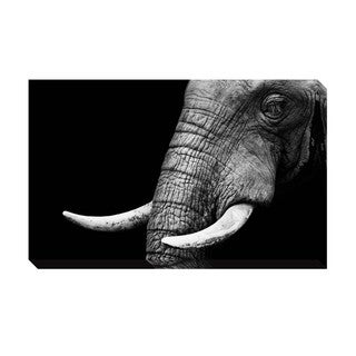 Elephant  Oversized Gallery Wrapped Canvas