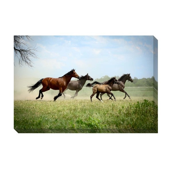 Gallery Direct Running Wild Oversized Gallery Wrapped Canvas