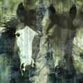 'Horse Double Image' Giclee Canvas Art