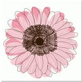 Single Flower- Light Pink Art Print