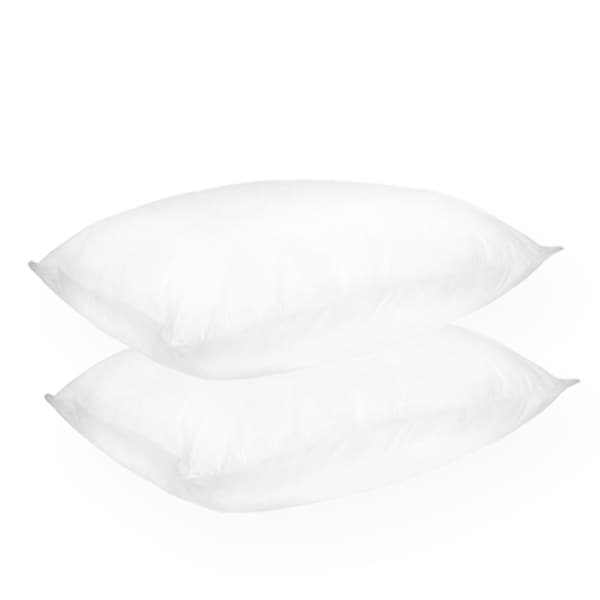 Home Accents Extra Firm Support Density Jumbo-size Feather Pillow (Set of 2)