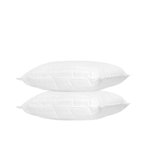 Home Accents Woven Dobby Feather Standard-size Pillow (Set of 2)