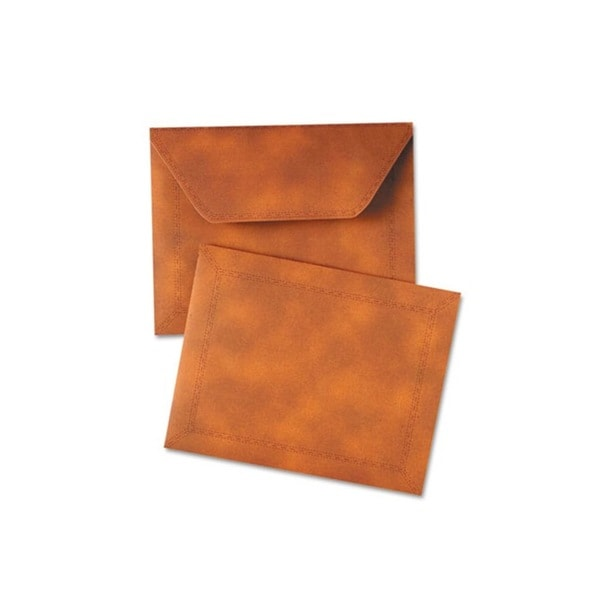 Designer Expanding Letter Size Brown Document Carrier (9.5 x 12)