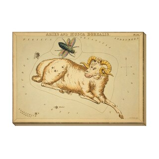 Aries and Musca Borealis Oversized Gallery Wrapped Canvas