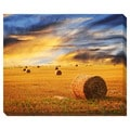 Golden Sunset Over Field Oversized Gallery Wrapped Canvas