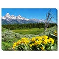 Grand Teton Wild Flowers Oversized Gallery Wrapped Canvas