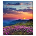 Floral Mountain Landscape II Oversized Gallery Wrapped Canvas