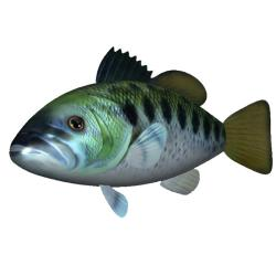 As Seen On TV RC Flying Swimming Bass