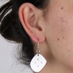 Stainless Steel Polished Cubic Zirconia Dangle Earrings