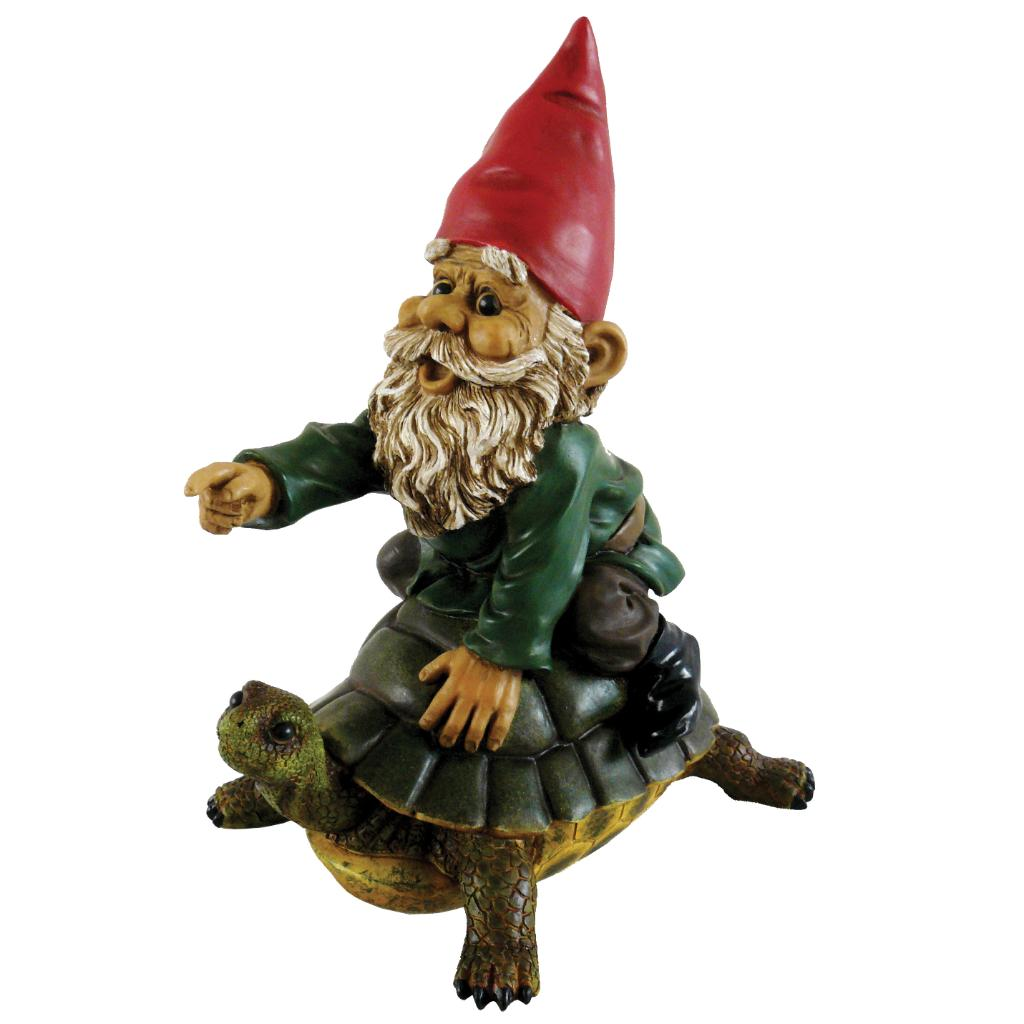 Michael Carr Garrold Gnome On Turtle
