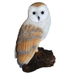 Michael Carr Barn Owl On Stump Resin Statue