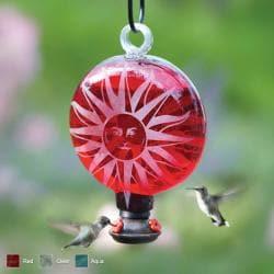 Sun Hummingbird Feeders