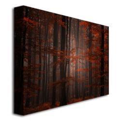 Philippe Sainte-Laudy 'Spiritual Wood' Canvas Art