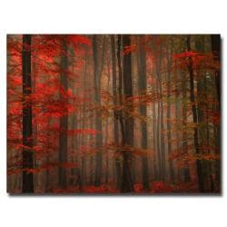 Philippe Sainte-Laudy 'Enchanting Red' Canvas Art