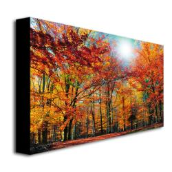 Philippe Sainte-Laudy 'Camouflage' Canvas Art