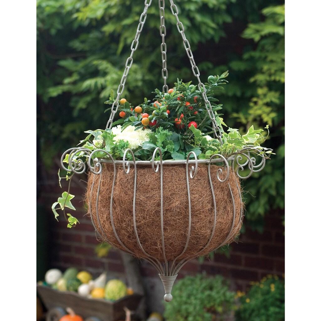 Laura Ashley Oyster Hanging Poppy Basket