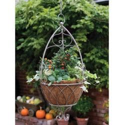 Laura Ashley Acorn Oyster Hanging Basket