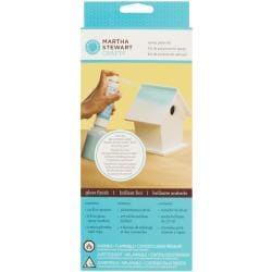 Martha Stewart Gloss Finish Spray Paint Kit