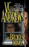 Broken Wings (Paperback)
