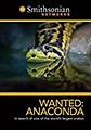 Wanted Anaconda