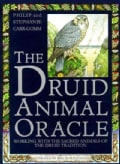 The Druid Animal Oracle: Working With the Sacred Animals of the Druid Tradition (Paperback)