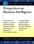 Perspectives on Business Intelligence (Paperback)