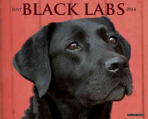 Just Black Labs 2014 Calendar (Calendar)