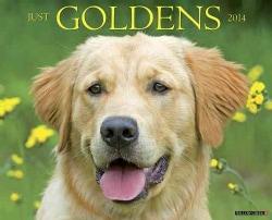 Just Goldens 2014 Calendar (Calendar)