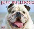Just Bulldogs 2014 Calendar (Calendar)